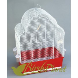 Birds Cages & Stands