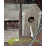 Solid Wood  Breeding Box  for  Cockatiel Parrot