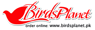Birds Planet Coupons